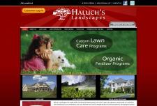 Haluchs Landscapes